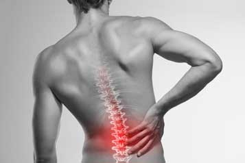 Upper Cervical Chiropractor in Edmonton, AB - Low Back Pain